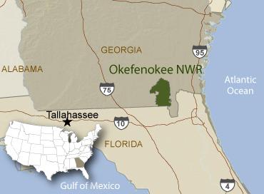 okefenokee location