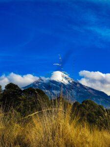 Orizaba Mountains Forest